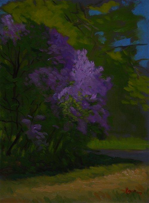 Studio Lilacs